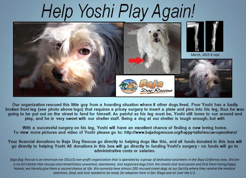 Yoshi final